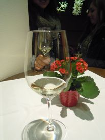 hlwhaag_weinexperience023