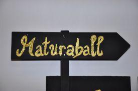 hlwhaag_ballvorbereitungen007