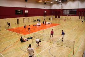 hlwhaag_badminton2241